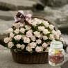 100 Roses - Romantic Garden + Candy (16031401)