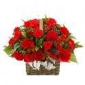 Red carnation basket (16041705)