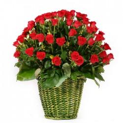 100 Roses basket 1(OFA-023)