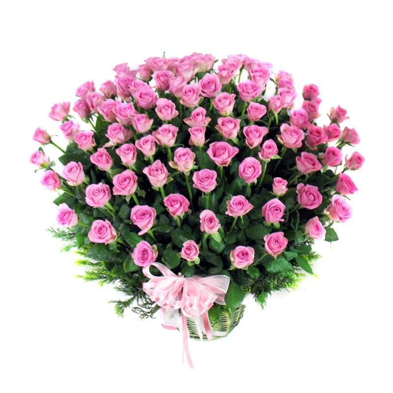 100 pink roses basket  ofa