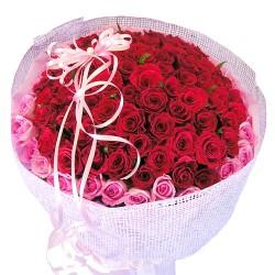 100 Roses 3 (OFB-013)