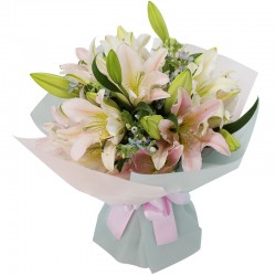 Lily 1 (OFB-039)
