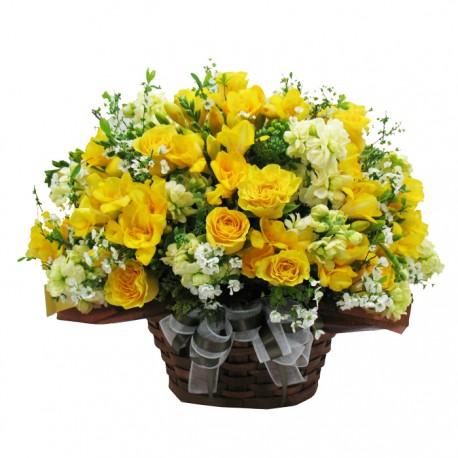 Bright spring day (11001050)