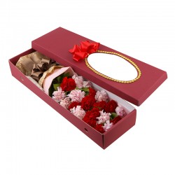 Mixed Carnation Box (15042709)