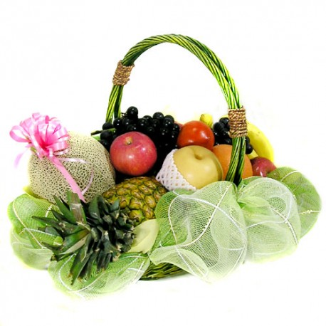 Fruits basket2(ONB-007)
